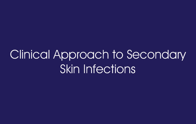 Clinical Approach to Secondary Skin Infections